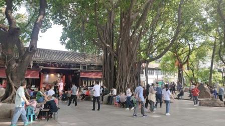 广州荔湾湖公园风景,,,,,,2021年10月16日下午三点.