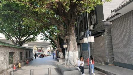 广州三元里古庙抗英斗争纪念堂风景区,,,,12021年10月17日下午三点.
