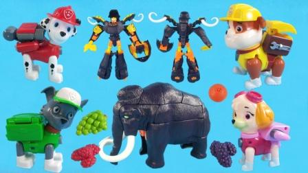 汪汪队小砾在森里发现猛犸象,和它做了朋友,才发现是变形机甲