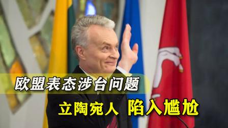 欧盟就涉台问题明确表态,立陶宛处境尴尬,小国真没捣乱资本