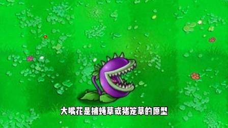 植物大战僵尸:大嘴花