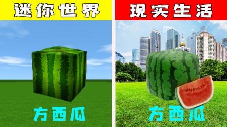 迷你世界:游戏VS现实,现实中居然也有方西瓜,我还是第一次见