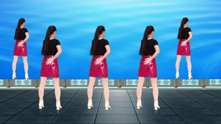 DJ广场舞《情散》背面演示