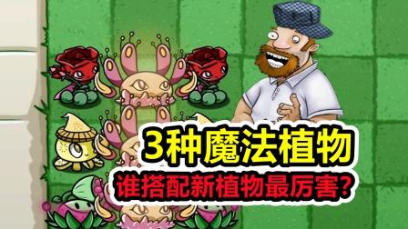 植物大战僵尸:3种魔法植物,谁实力最强?
