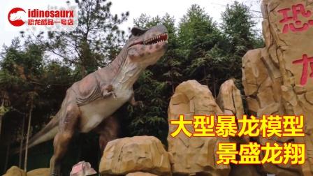 定制的恐龙谷户外恐龙模型 - 大型暴龙装饰展品