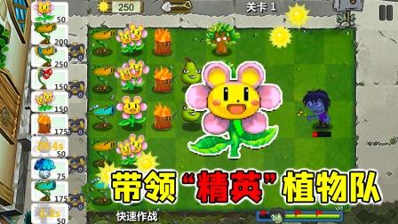 万物皆可植物大战僵尸:太阳花带领精英植物战队!能打赢僵尸吗