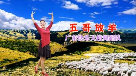 广东快乐天使舞蹈队李媛舞蹈《五哥放羊》编舞:饶子龙