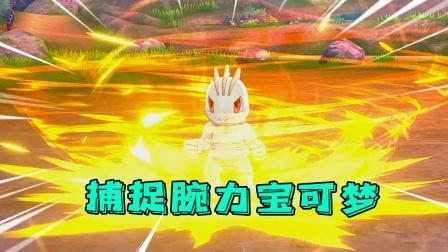 宝可梦剑盾:腕力宝可梦使用技能超级帅,将它捕捉成为我的伙伴