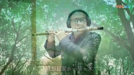 红枣树bD-竹笛bD5