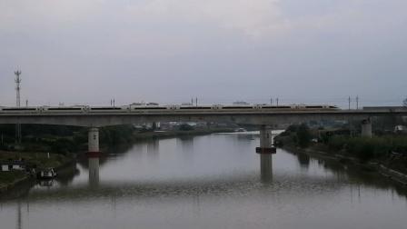 【连镇客专】G8263次(宿迁→上海)徐州东动车所CRH380CL担当通过金湾河大桥