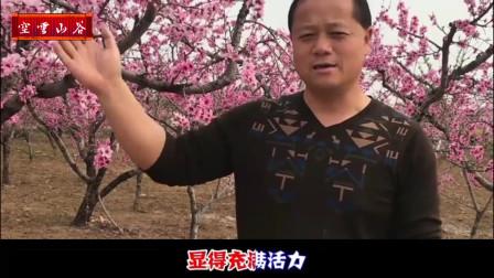 山谷回音《北国之春》歌手:邓丽君