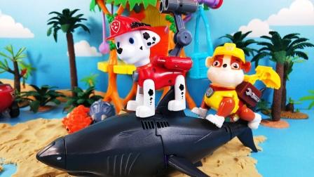 汪汪队到海滩度假奇遇记,收留小恐龙认识变形大鲨鱼