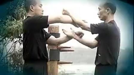 咏春拳掌法训练(上)-麦耀明
