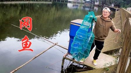 山药带小朋友去水库网鱼,短短1小时却收获满满,回家正好炸着吃