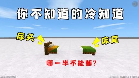 迷你世界:使用复制器把床变成两半,究竟哪边能睡觉呢?