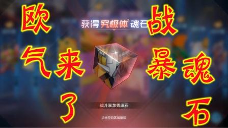 【Z小驴】数码宝贝新世纪~第2期抽到战斗暴龙兽魂石了!