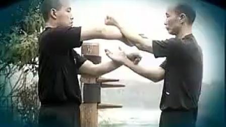 咏春拳掌法训练(下)-麦耀明