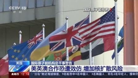 国际原子能机构总干事:美英澳合作恐遭效仿