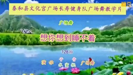 想你想到睡不着泰和县长寿健身队教学片