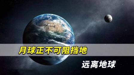 月球正不可阻挡地远离地球,速度急速增加时或有重大事件发生