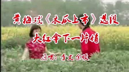 黄梅戏《木瓜上市-大红伞下一片情》老鹰翻唱。