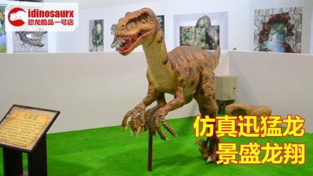 科技馆电动恐龙展品 - 仿真迅猛龙模型