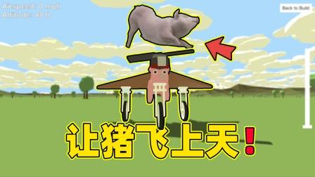 搞笑游戏:你见过猪在天上飞吗?让我们帮助它实现愿望吧!