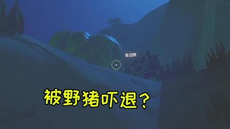 木筏求生21:深夜进岛捡资源,三人被头野猪吓退?