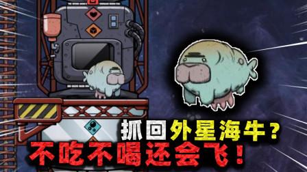 缺氧生存:捕获外星海牛!不仅不吃不喝,还能在真空环境飞行?