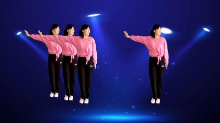 精选广场舞,简单动感舞步,时尚好看又好学
