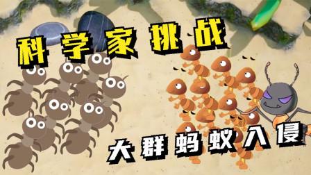 地下蚁国03:科学家挑战,大群蚂蚁和虫子入侵!