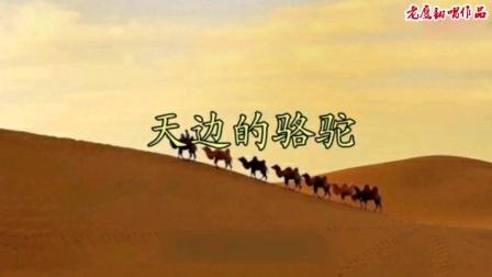 《天边的骆驼》老鹰翻唱。