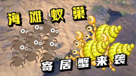 地下蚁国04:海滩蚁巢,寄居蟹来袭!