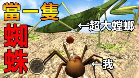 【当一只蜘蛛】立志成为最强蜘蛛! 先从猎杀螳螂开始!