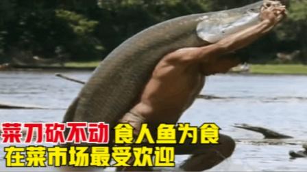 菜刀都砍不动的鱼,以食人鱼为食,在菜市场中却最受欢迎