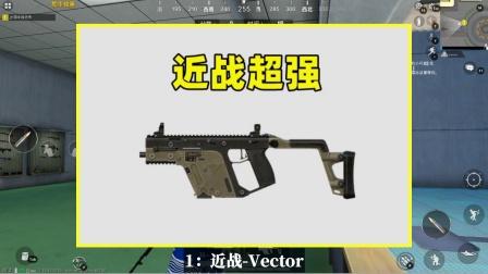 喜欢刚枪必选的3把武器,近战Vector,中远战是谁?