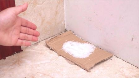 不管房子多大,墙角记得撒把食盐,并不是迷信,看完我也回家试试