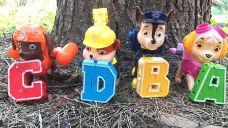 汪汪队立大功成员带来帮帮龙和变形字母玩具