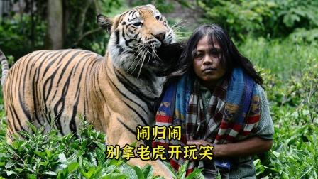 闹归闹!别拿老虎开玩笑!