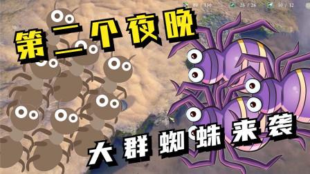 地下蚁国05:第二个夜晚,大群蜘蛛来袭!