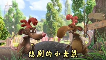小老鼠扮成小鸡去偷蛋,蛋没偷到自己却被偷了,搞笑动画电影