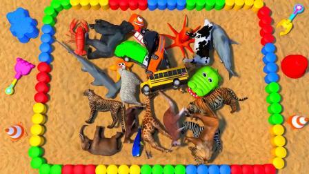少儿卡通动画 认识各种各样的动物 马 牛 羊 儿童亲子玩具