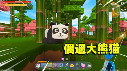 迷你世界高级生存597:桃林偶遇2只大熊猫,还造人工竹林,完美了