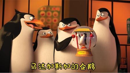 章鱼嫉妒心作祟,把企鹅变成四不像,主角菜鸟牺牲自己救下同类!