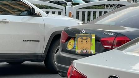 行车不规范,亲人两行泪,实习司机把求生欲打在公屏上!