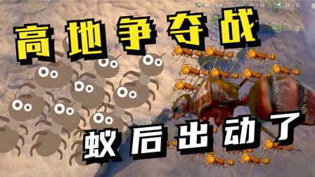 地下蚁国07:高低争夺战,对方蚁后都来了!