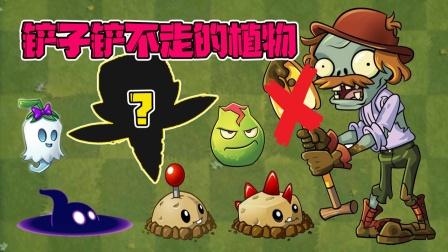 植物大战僵尸:盘点那些铲子僵尸铲不走的植物!想不到还有它?