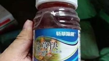 广东一#16岁女孩喝下农药抢救17天后脱离危险,苏醒后哭着感谢医护人员让她重获新生