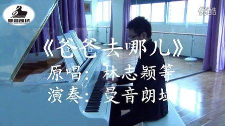 湖南卫视《爸爸去哪儿》同名主题曲(纯钢琴版)