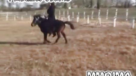 可儿骑小马